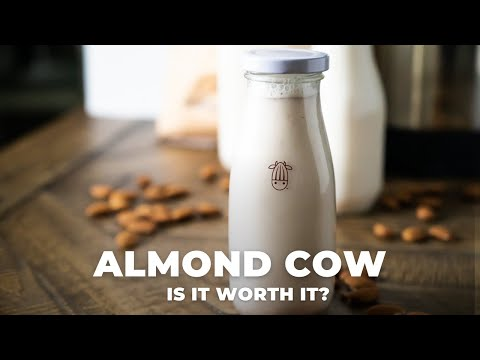 Is the Almond Cow plant-based milk machine worth it?